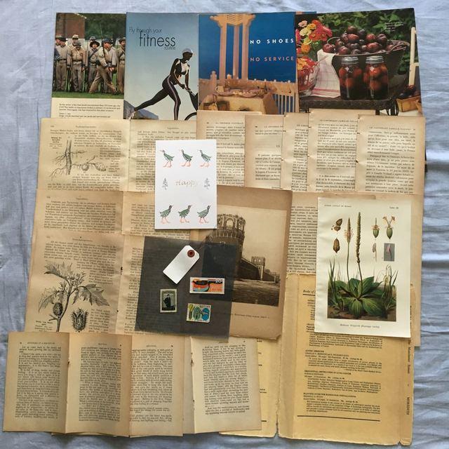 古書のページを中心に紙の詰め合わせ 22