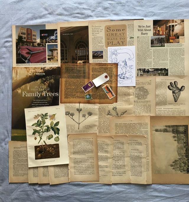 古書のページを中心に紙の詰め合わせ 23