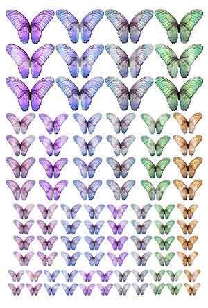 レジン封入用シート : Butterfly=1=