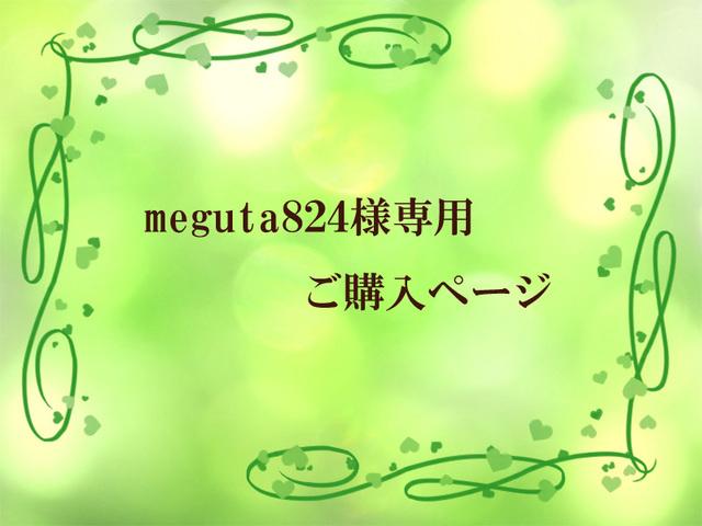 meguta824さま専用ご購入ページ