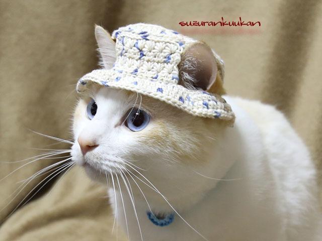 【猫用】編みカンカン帽3 2084<藍灰...