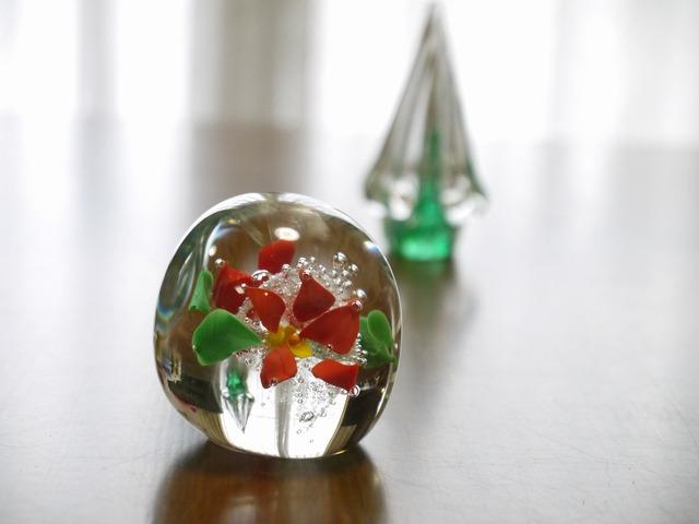 【お気に入り感謝プチセール】Green X'mas Tree&ポインセチア
