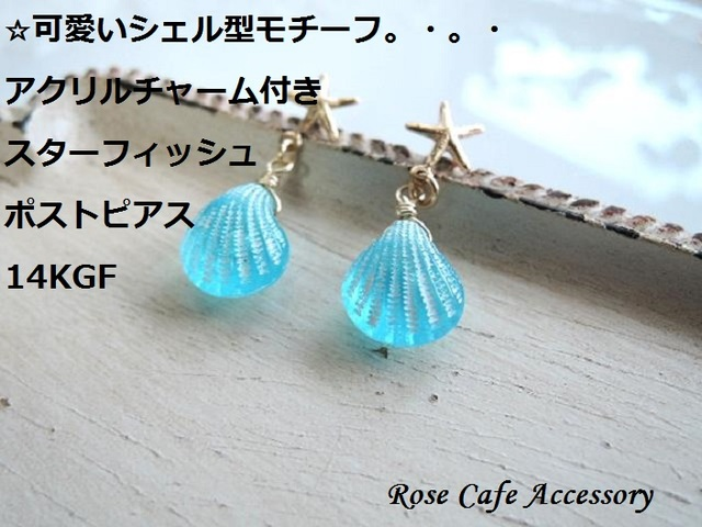 (1551)14KGF☆スターフィッシュ&シェ...