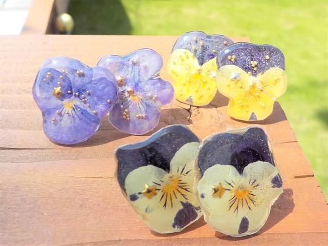 自然の贈り物!ビオラピアス 黄紫・白紫