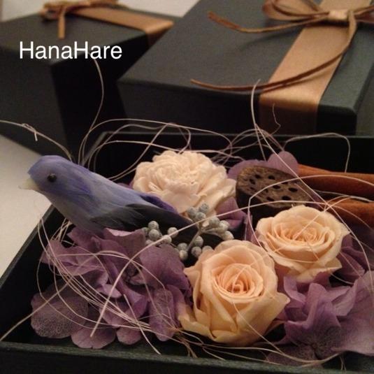 箱の中の小鳥 * 紫