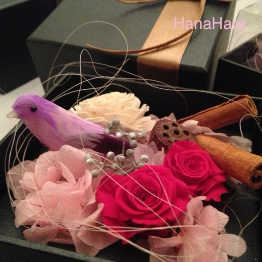 箱の中の小鳥 * ピンク