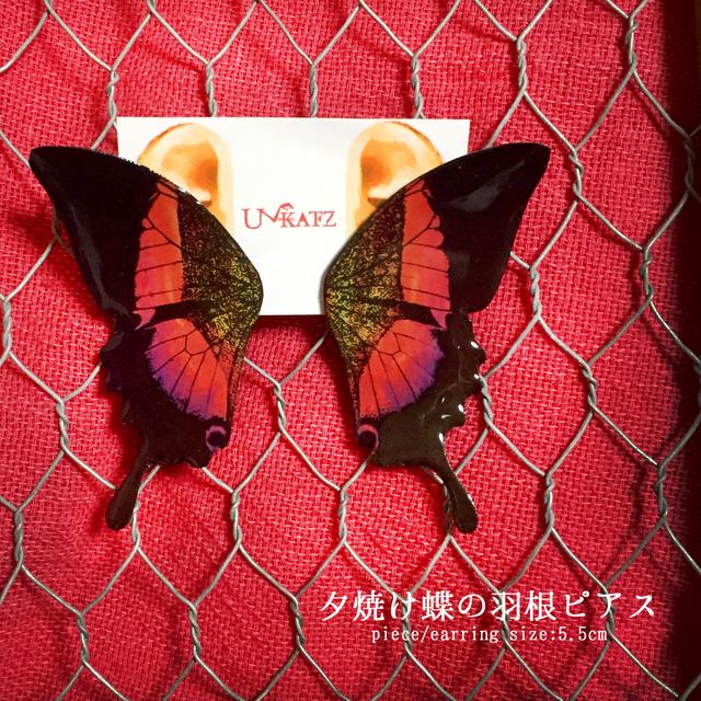 夕焼け蝶の羽根ピアス