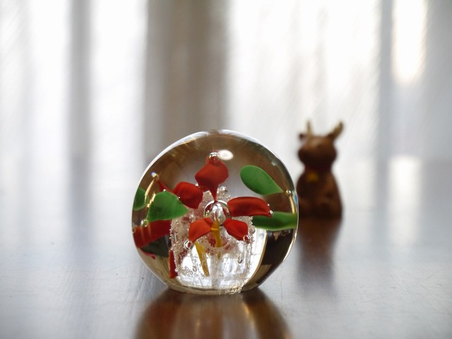 �Ԥ����ˤ��괶�եץ��������Flower in the Glass��V��NEW)