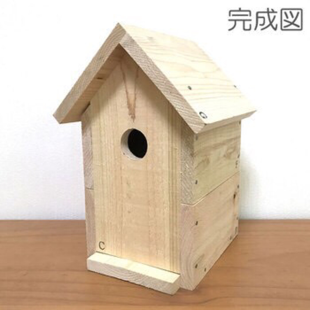 【連載】自由研究のタネ5/鳥類観察はダーウィン …