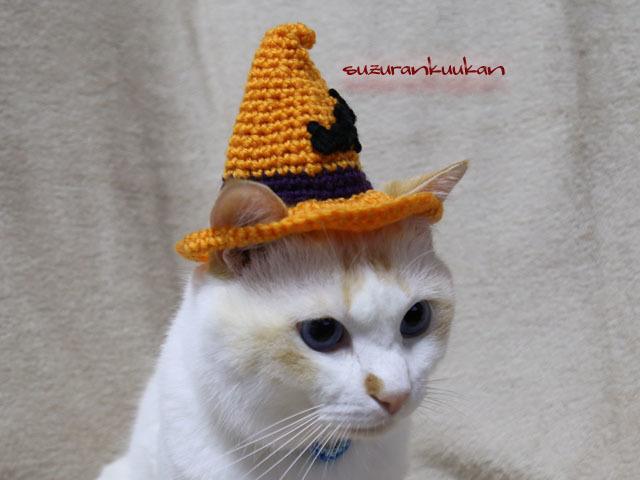 【猫用】ハロウィン帽子<橙×紫>