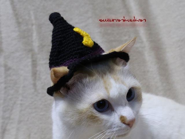 【猫用】ハロウィン帽子<黒×本紫>
