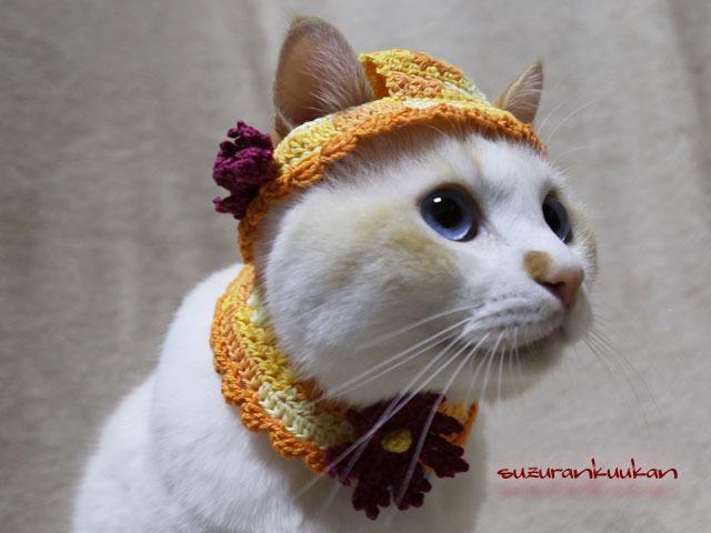 【猫用】帽子とケープ 秋桜付きセット...