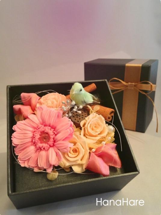 箱の中の小鳥 * ガーベラ