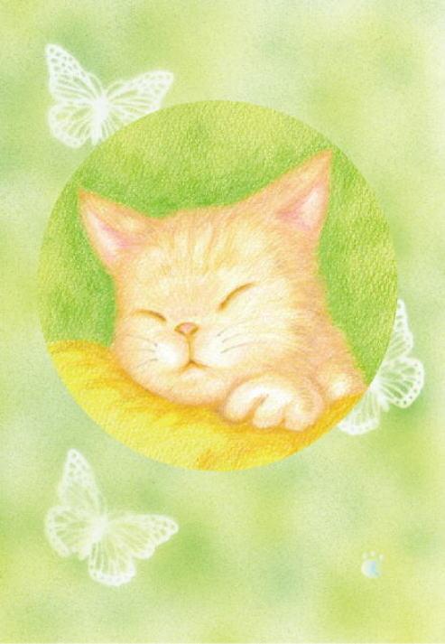 ポストカードセット3枚組「猫」