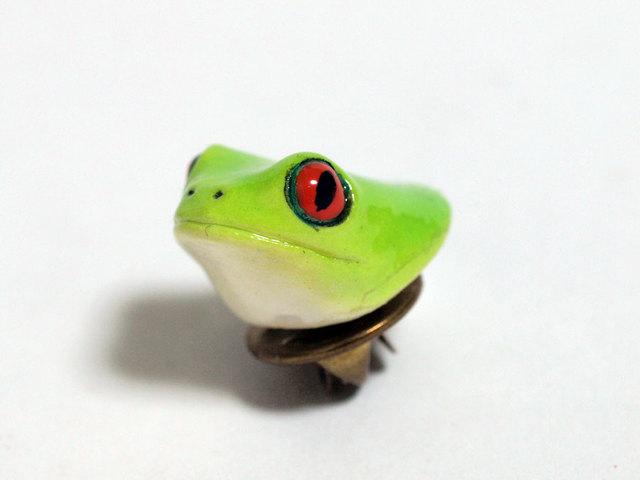 アカメアマガエルの頭のピンバッジ