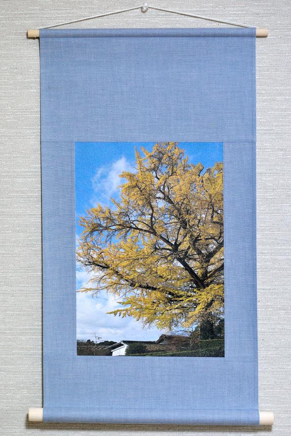 壁掛け 木・樹シリーズ「大銀杏」