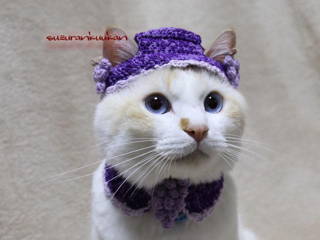 【猫用】帽子とケープ 葡萄付きセット...