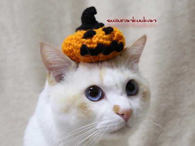 ★受注制作★乗っけ編み笑いかぼちゃ<橙>