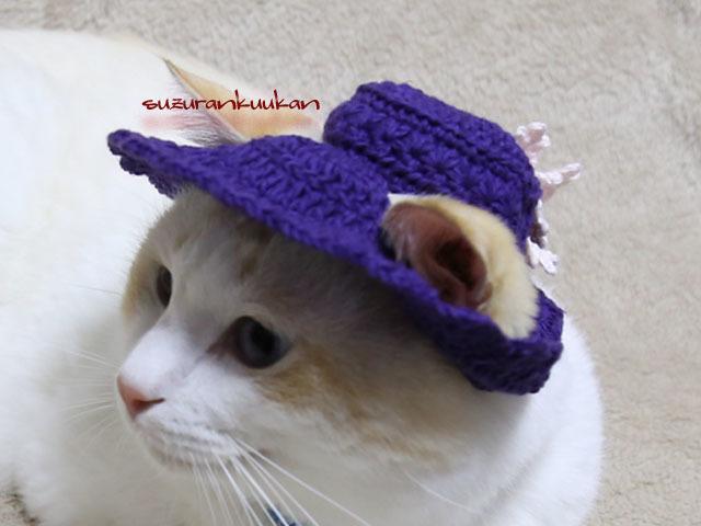 【猫用】編みスラウチハット<パンジー...