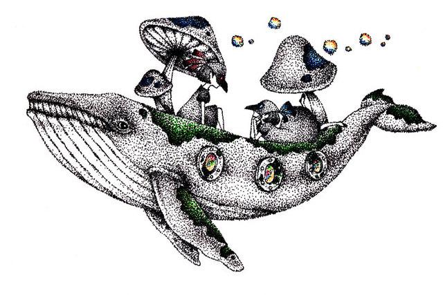 菌床クジラとバクとエリー【点描画*原画】