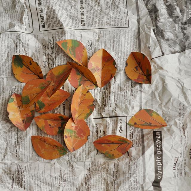 落ち葉のカード