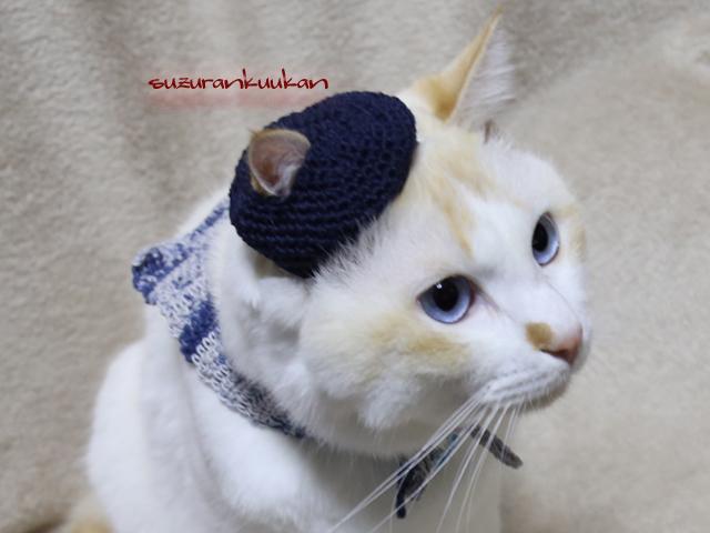 ★受注制作★【猫用】ベレー帽セット2...