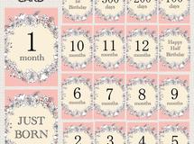 月齢カード flower〈pink〉