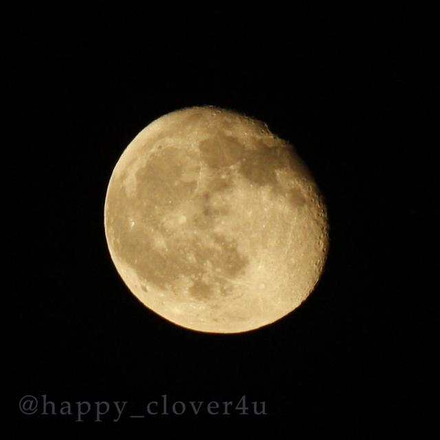 pecoさま専用【あの日の月】(2016.7.22)...