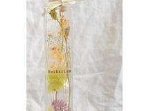 植物標本 ハーバリウム lovely flower