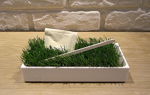 """緑(グリーン)の芝(植物)のグリーントレイ""""midori-PB"""""""