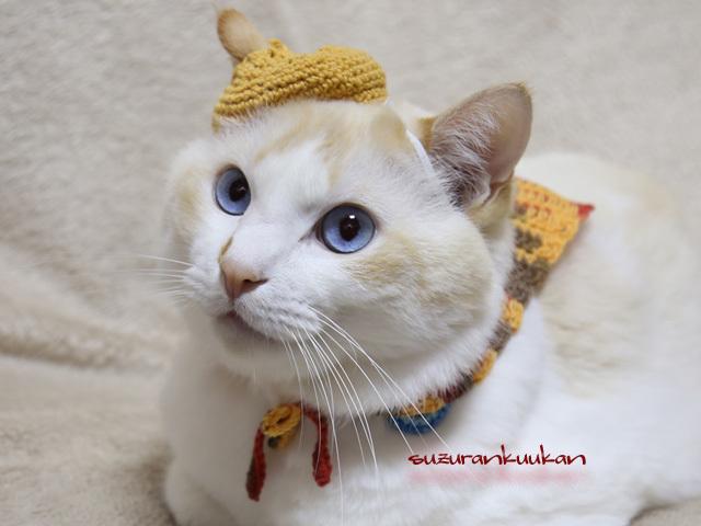 【猫用】ベレー帽セット<黄系>(穴あ...