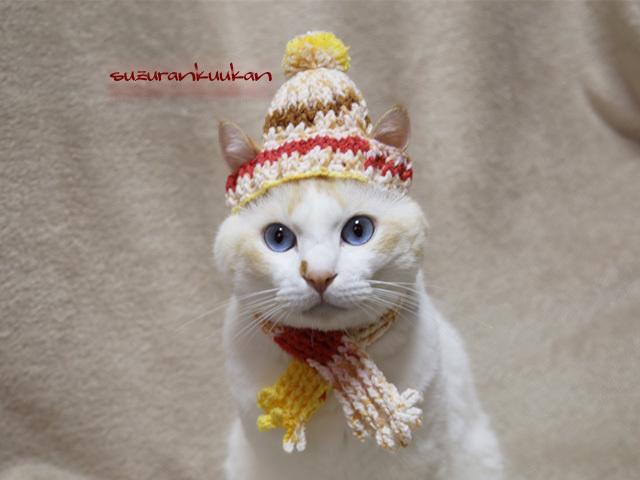 【猫犬用】ニット帽とマフラーのセット...