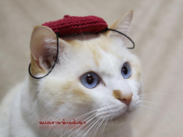 【猫犬用】ベレー帽<真赤系>