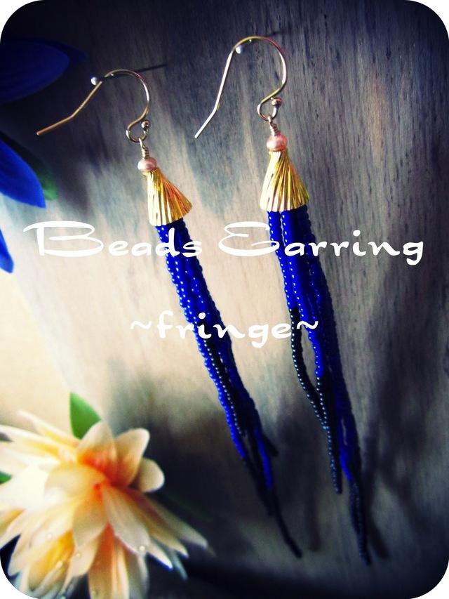 Beads Pierce.   ~ fringe ~   (b/b)