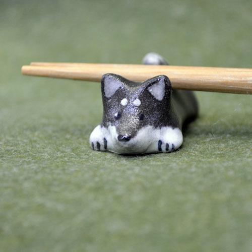 背中にお箸を置いてもらうのが好きな黒柴犬