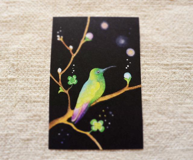 春の絵葉書 (2枚 set)