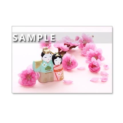 130)Postcard 5枚組 おひな様とチューリップとラナンキュラス