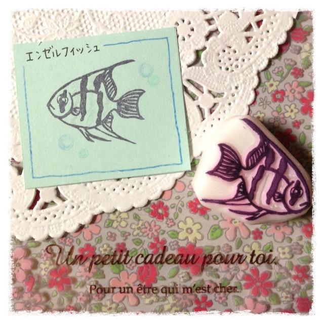 消しゴムはんこ  海水魚シリーズ*エンゼルフィッシュ