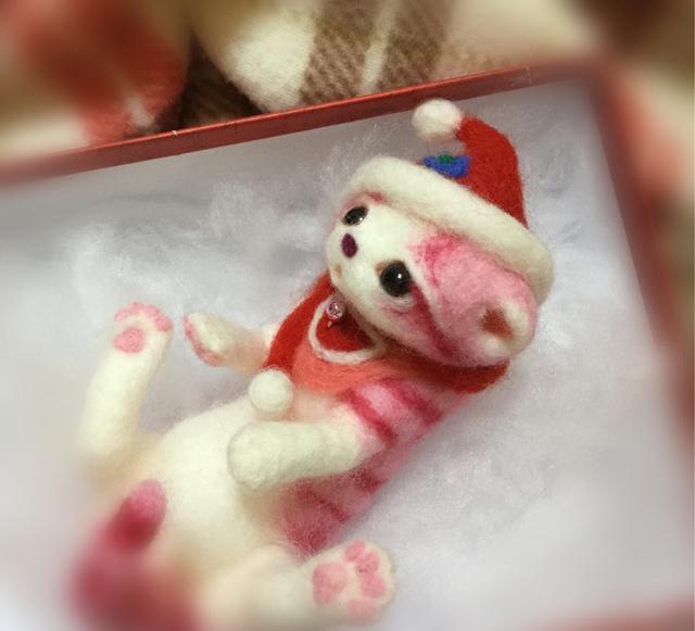 クリスマスにゃんこNo.5
