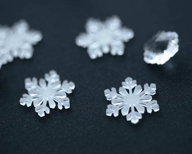淡く透ける雪の結晶のイヤリング...