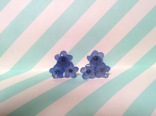 Flower*�魯�����Υ�����