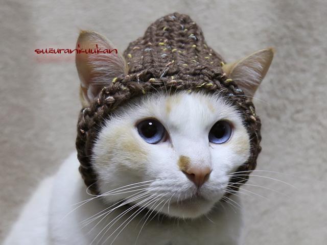 耳出るフード帽<ブラウンナッツ>