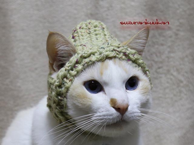 耳出るフード帽<グリーンナッツ>