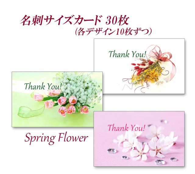 春の花   名刺サイズサンキューカード ...