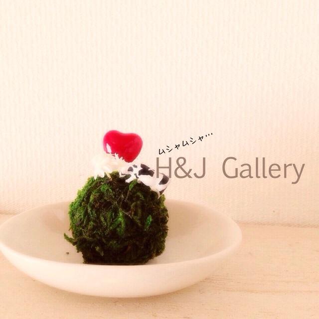 ○小さな苔玉  草はむ牛(受皿付き)