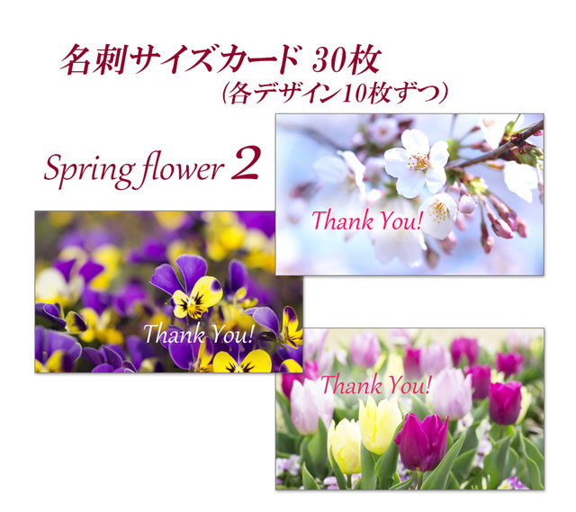 春の花 2   名刺サイズサンキューカー...