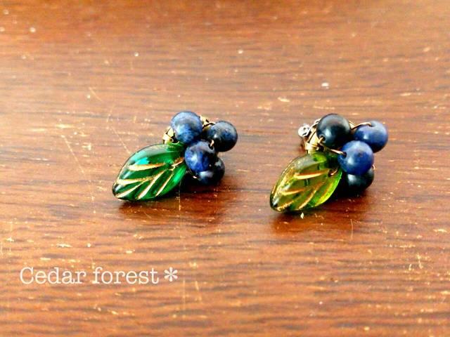 森の木の実 ブルーベリーピアス、イヤリング