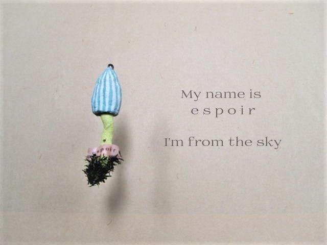 空からキノコ(希望)