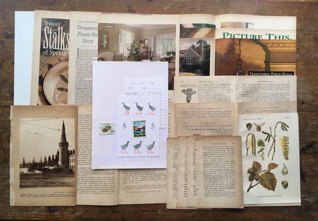 古書のページを中心に紙の詰め合わせ 24
