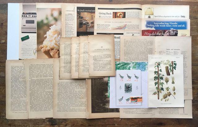 古書のページを中心に紙の詰め合わせ 26